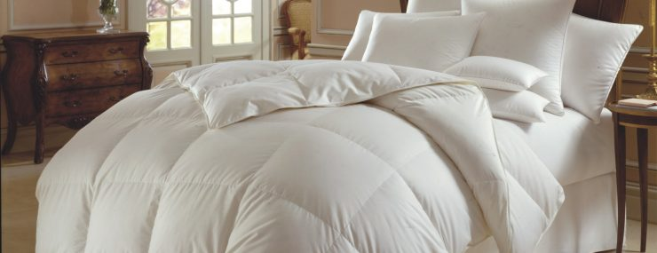 best down comforter the best goose comforters jan 2018 guide and reviews 31474