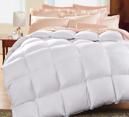 opener royal courtesy of reviews products warmth comforters jcpenney top velvet home goose medium level rated best comforter down landscape