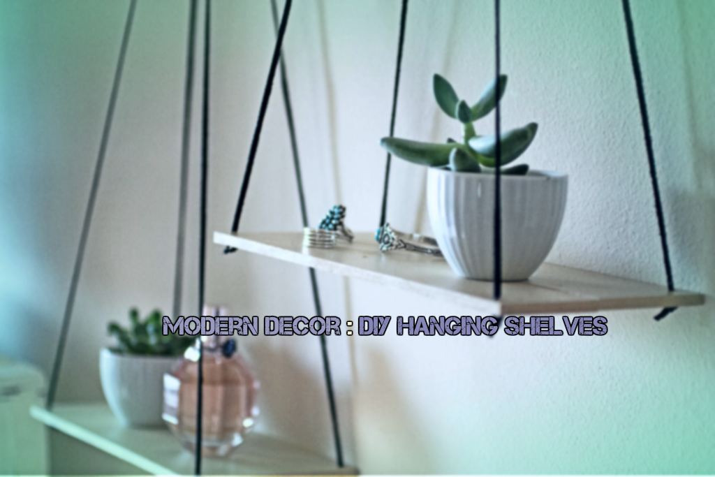 Modern Decor : DIY Hanging Shelves