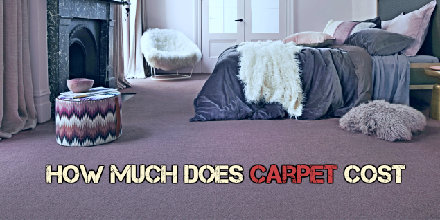 How Much Does Carpet Cost : Purchase Price, Installation Costs and Top Choices