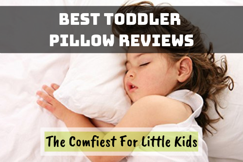 Best Toddler Pillow Reviews featured image
